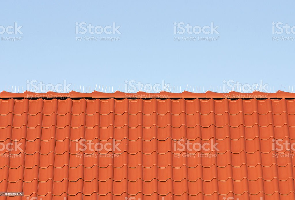 Roof tiles and blue sky 1 royalty-free stock photo