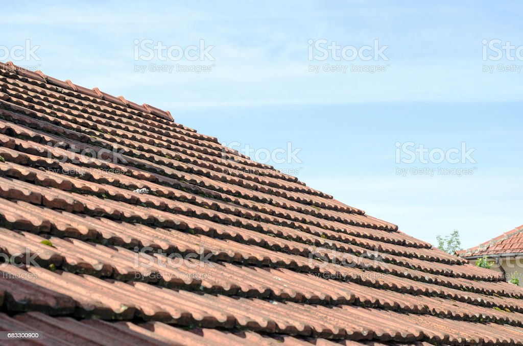 Roof tiles foto stock royalty-free