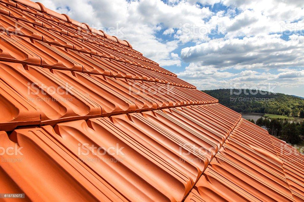 Roof top stock photo