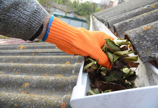 Roofer is cleaning with hand a roof gutter from fallen leaves and dirt in autumn.