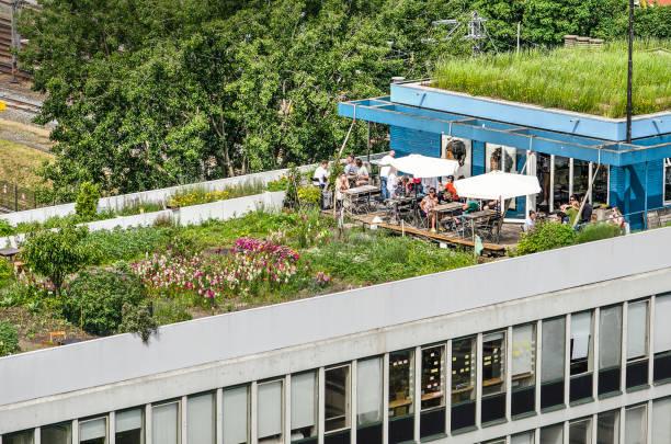garten und café auf dem dach - dachgarten stock-fotos und bilder