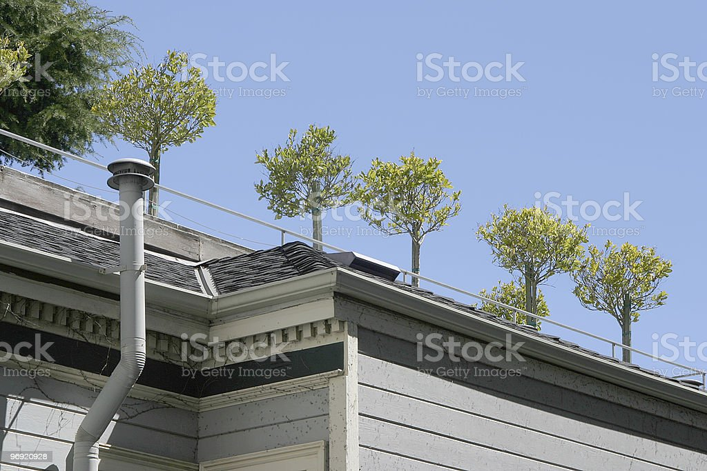 Rooftop garden royalty-free stock photo