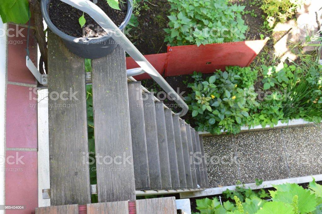 rooftop garden way zbiór zdjęć royalty-free