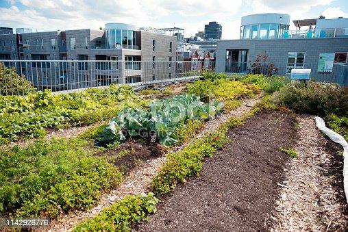 Rooftop greenhouse garden in Montreal Quebec Canada