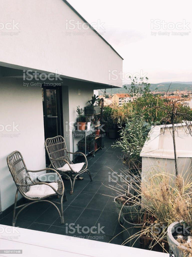Rooftop Terrace Garden Stock Photo Download Image Now Istock