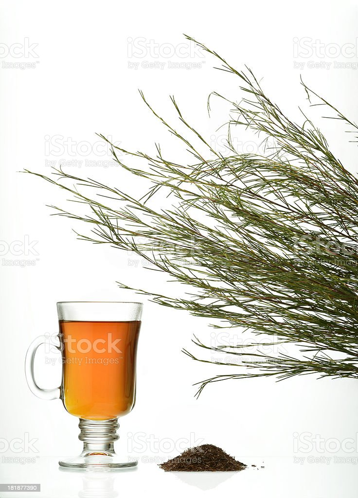 Rooibos tea and leaves on white background stock photo