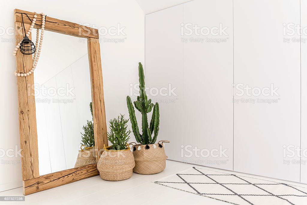 Room with mirror and cactus stock photo