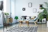Scandi carpet in classic living room with plants, posters and wooden rustic furniture