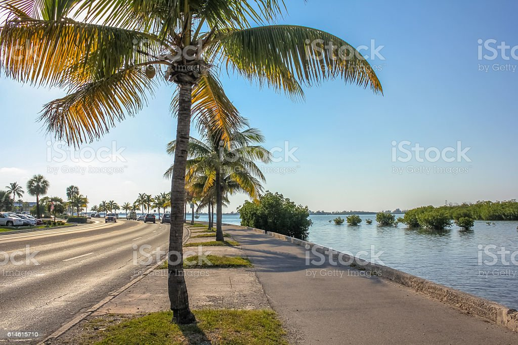 Roosevelt Blvd Key West stock photo
