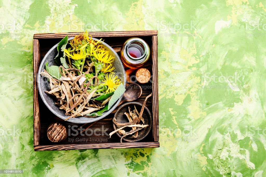 Root And Tincture Of Elecampane Stock Photo - Download Image Now