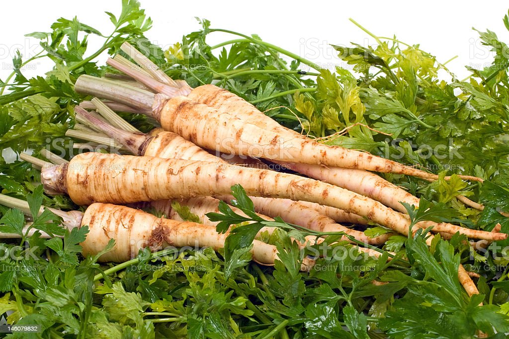 Root Parsley on Leaves royalty-free stock photo