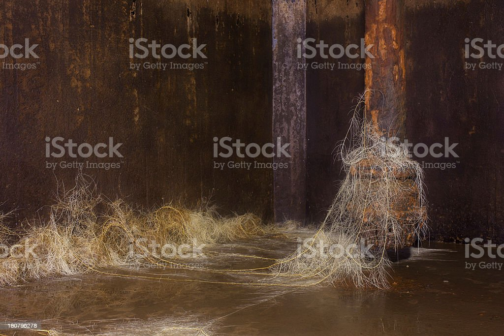 rootage royalty-free stock photo