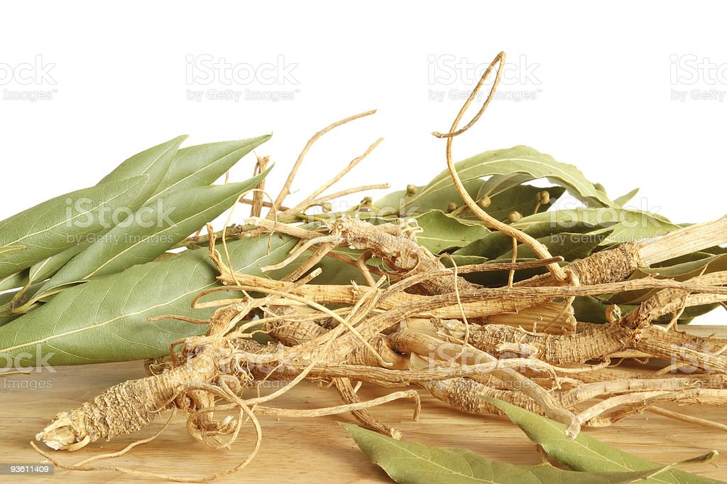 Roots and fresh bay leaves royalty-free stock photo