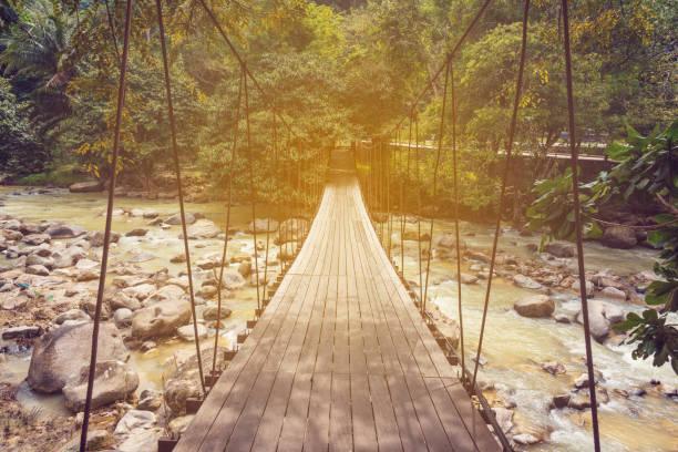 Hängebrücke über den Fluss im Wald – Foto