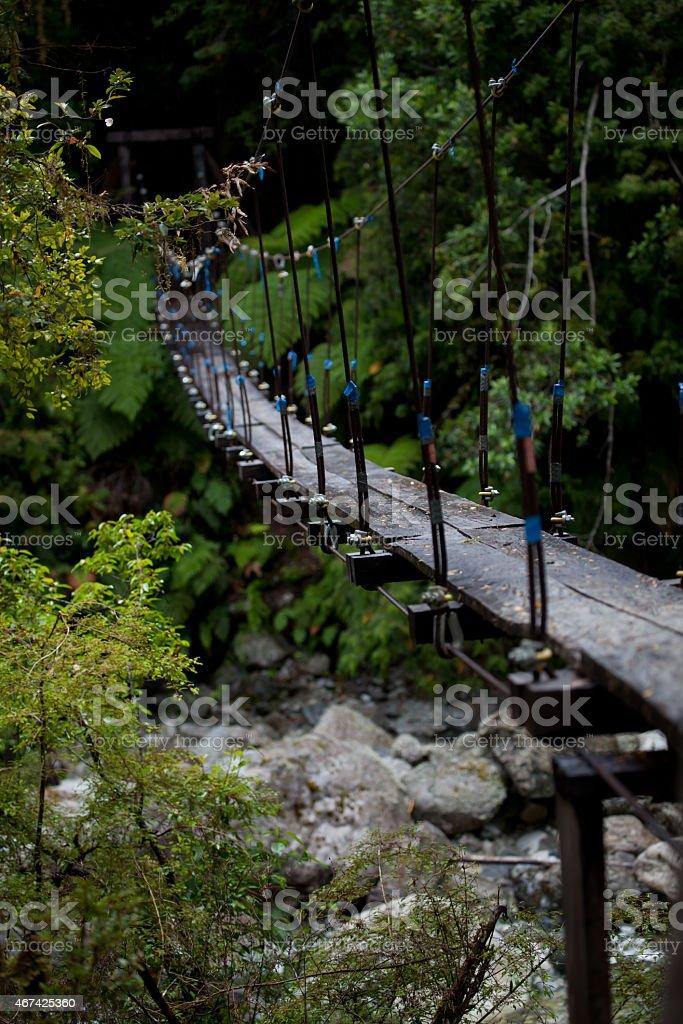 rope bridge in temperate rainforest stock photo