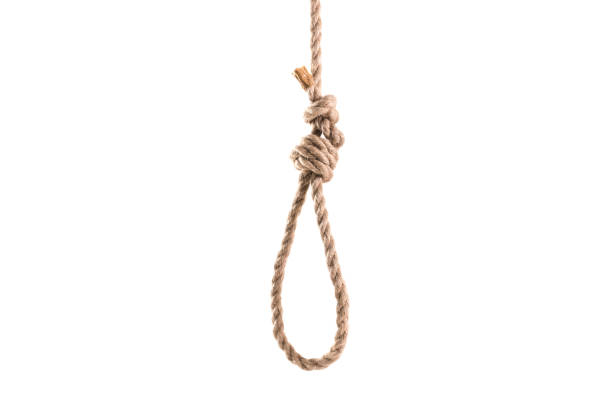 rope loop for hanging isolated on white background - noose stock photos and pictures
