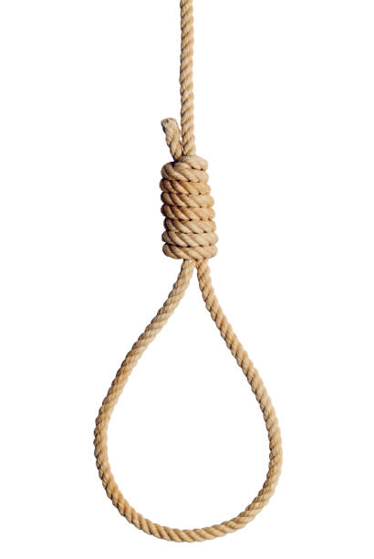 Rope Noose Old West Hang Mans Noose Isolated on White Background. tighten stock pictures, royalty-free photos & images