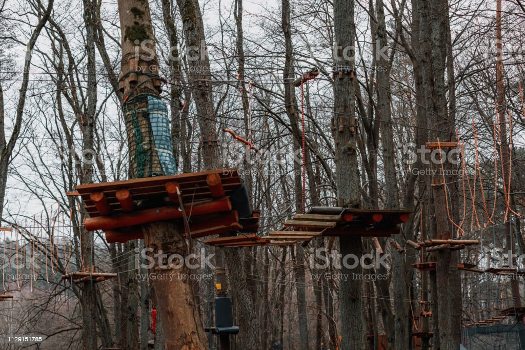 rope park in the forest – zdjęcie