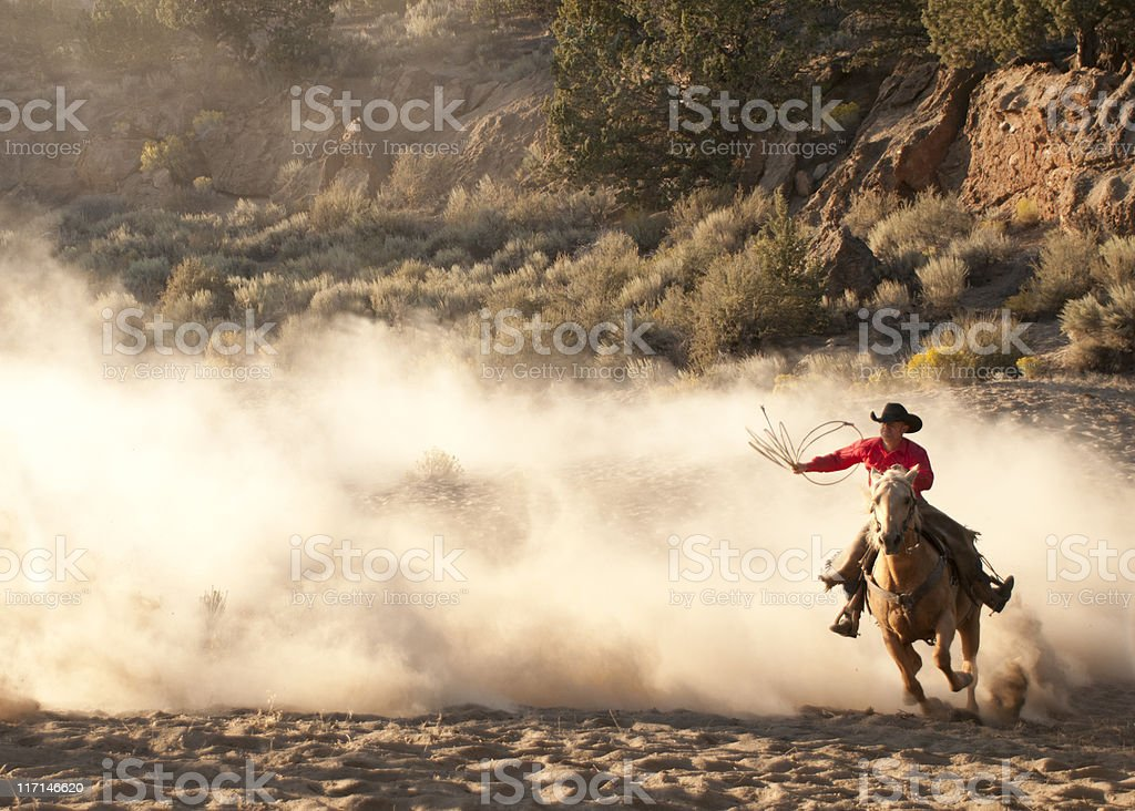 Roper cowboy, arm raised, on running horse-backlit dust stock photo