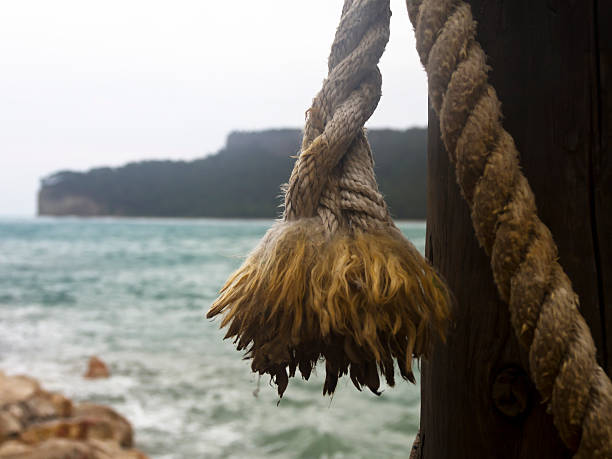 ropes and sea background - serpilguler stok fotoğraflar ve resimler