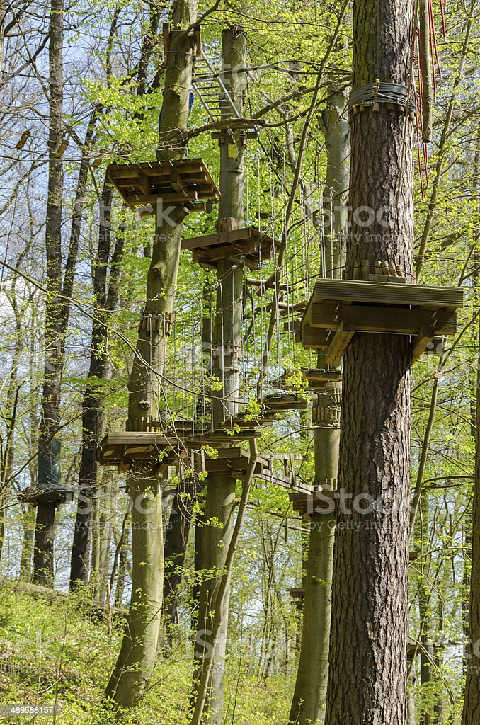 ropes course in a forest stock photo