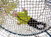 Low angle view of a little boy lying on ropes net.