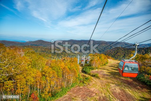 Rope way through the yellow autumn forest under blue cloudy sky in hokkaido