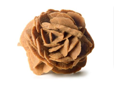 Rosa del desierto