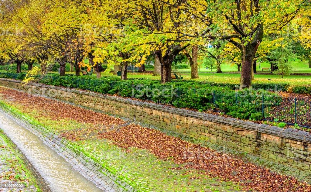Rosalind Park Bendigo stock photo