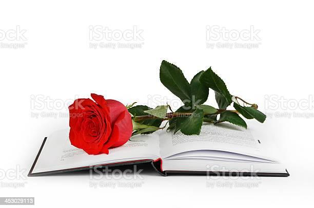 Rose and book picture id453029113?b=1&k=6&m=453029113&s=612x612&h=x86q umzsj52hx 1qwqg yyw8suwvg6ik59j5ovzxw4=