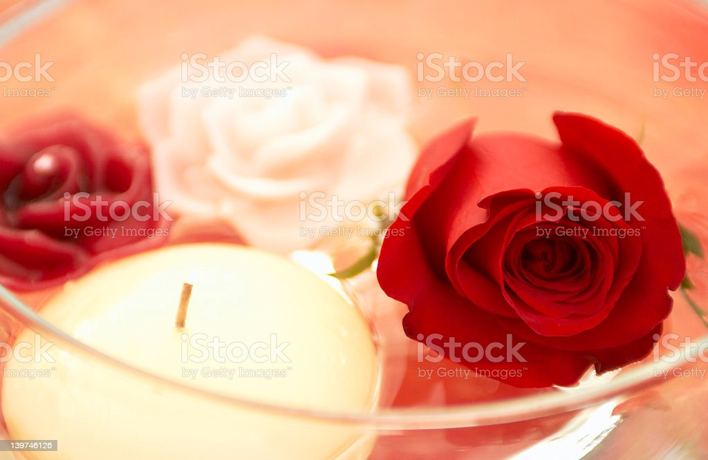 rose and candles royalty-free stock photo