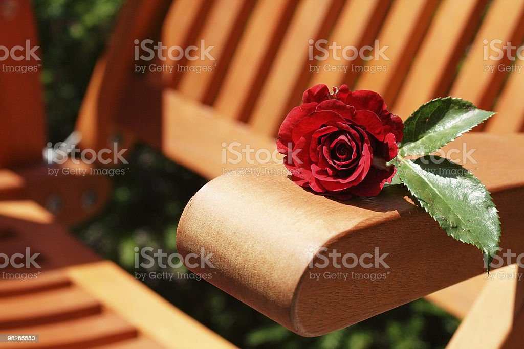 Rose and garden chair royalty-free stock photo