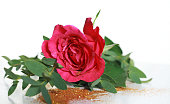 A dark pink rose lying on a table sprinkled in gold glitter. Taken against a white background in a studio. Focus point is on the centre of the flower.