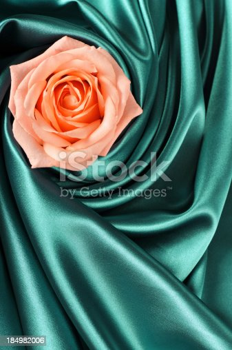 pink rose on a green silk