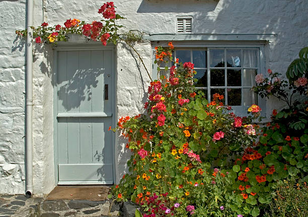 Rose around the Door a charming cottage in cornwall,england chalet stock pictures, royalty-free photos & images
