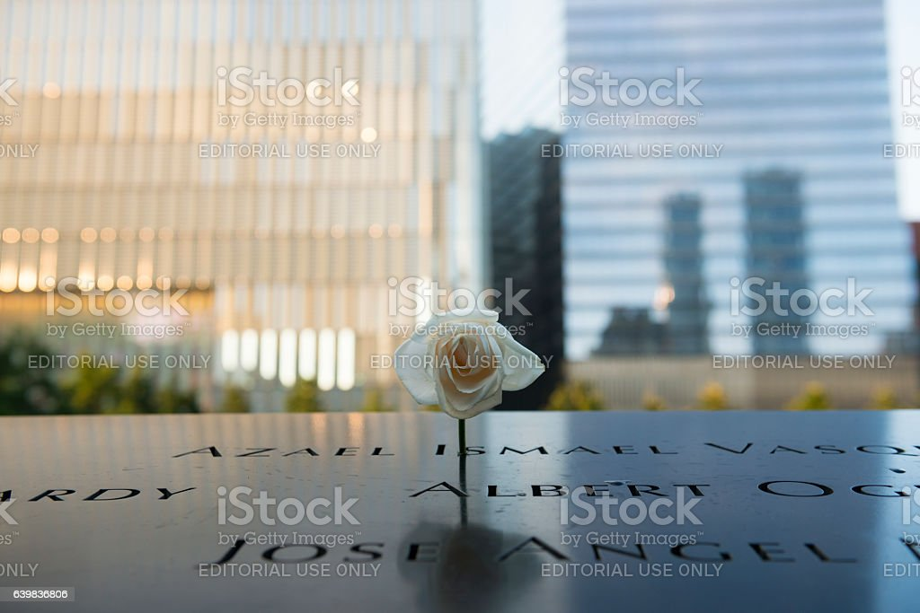 Rose at 9-11 Memorial at Ground Zero, New York City stock photo