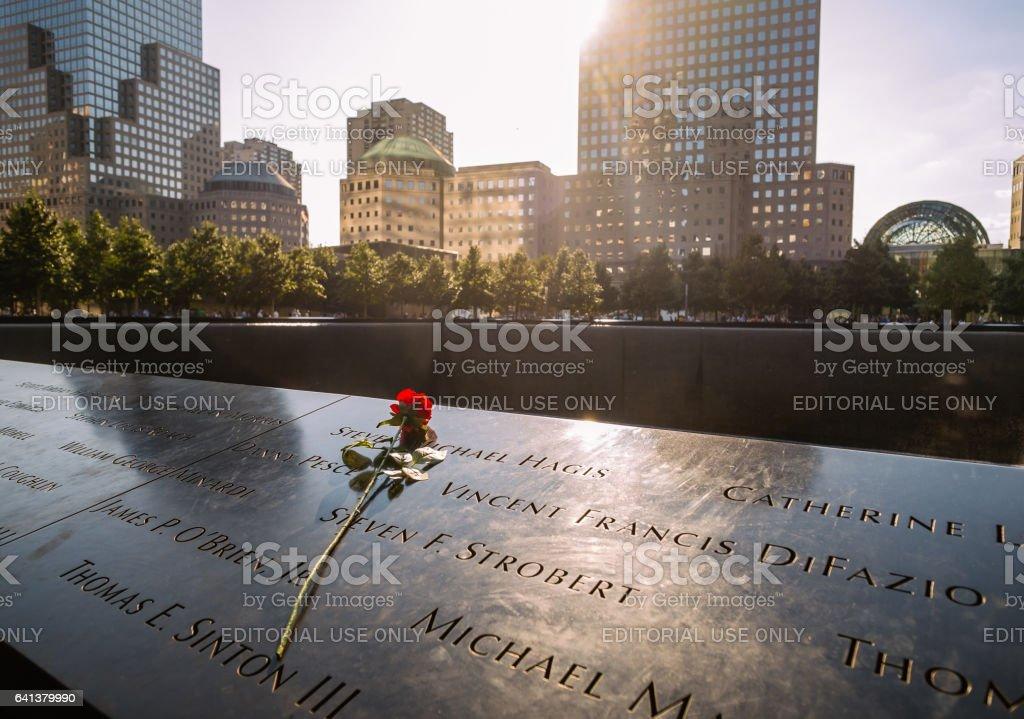 Rose at the Memorial stock photo