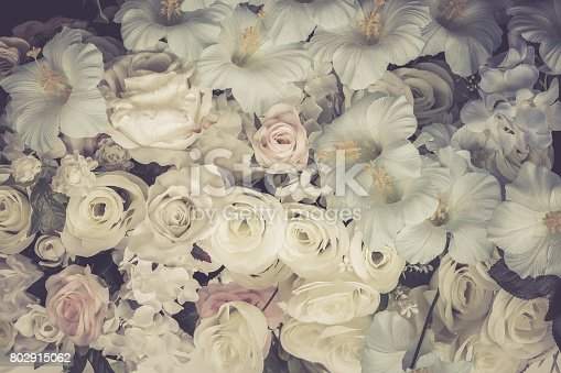 istock Rose background color tone vintage lonely sad. 802915062