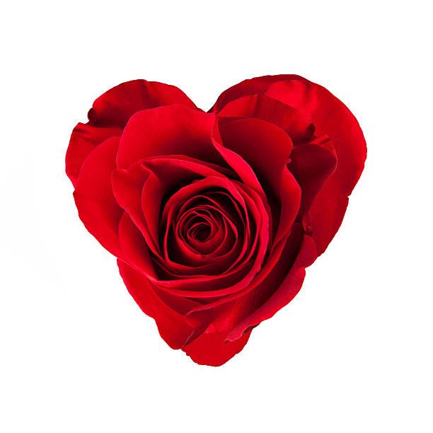Rose blossom in heart shape picture id536032819?b=1&k=6&m=536032819&s=612x612&w=0&h=qg9owrnhkh6qpn0iaklnwvxfbgjmqnietl0esfpizzy=