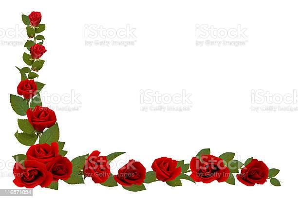 Rose border picture id116571034?b=1&k=6&m=116571034&s=612x612&h= lp2hlr6dcmmh7csf3t0d 16n4n9p7ckxhruehx  l0=