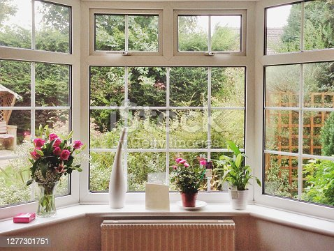 istock Rose bouquet and pot plants on bay window in a home 1277301751