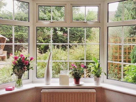 View of overgrown garden through bay window