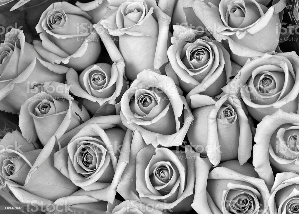 Rose bouquet in Black and White stock photo