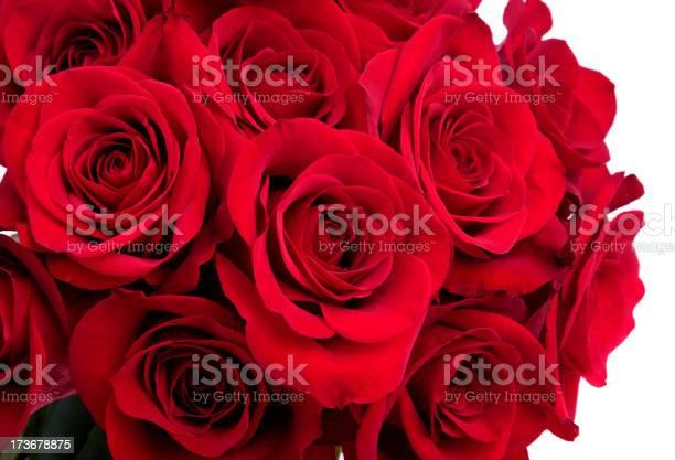 Rose bouquet picture id173678875?b=1&k=6&m=173678875&s=612x612&h=im4fnmxzi6smuhblsuljebmsscickxrrren2puf6g1a=