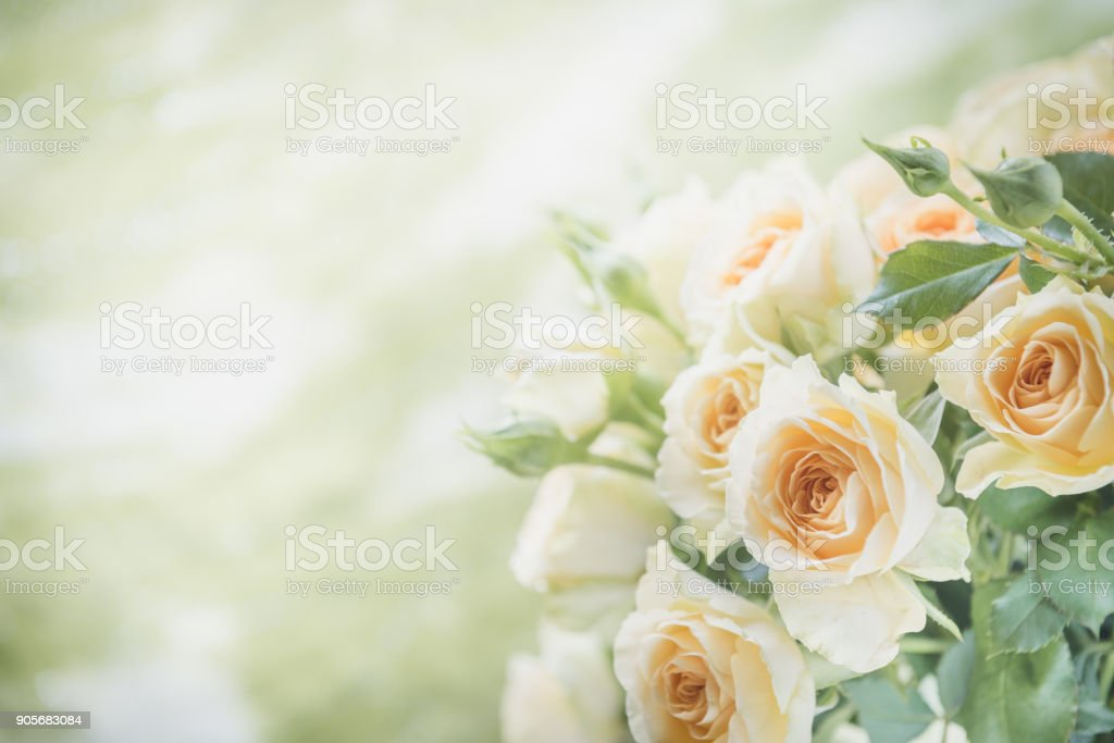 Image de bouquet de roses aux tons - Photo