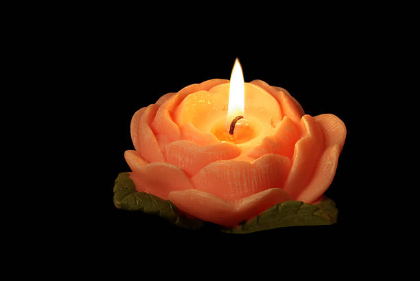rose candle - mikefahl stock pictures, royalty-free photos & images