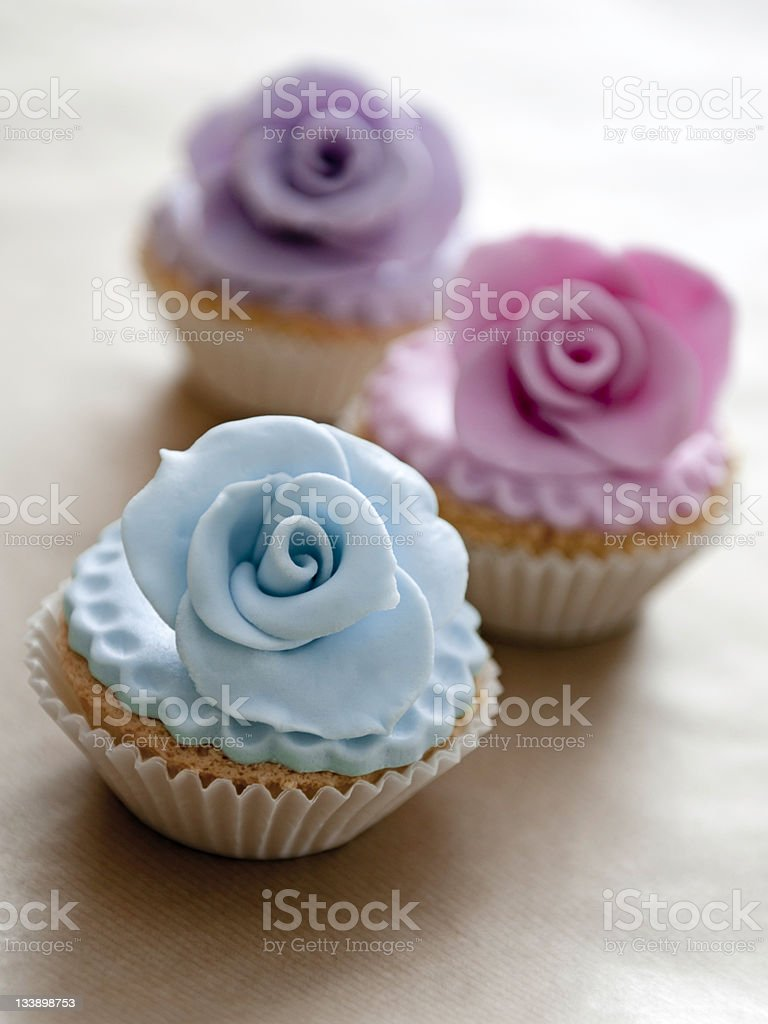 Rose Cupcakes stock photo