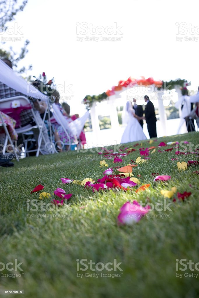 Rose Flower Petals in Wedding Ceremony Aisle royalty-free stock photo