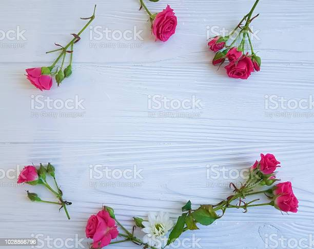 Rose flower pink on white wooden background frame picture id1028866796?b=1&k=6&m=1028866796&s=612x612&h=f2rk1xry0rinyyctkvevyqrnrkdm4ziyydaq0bb7ysq=