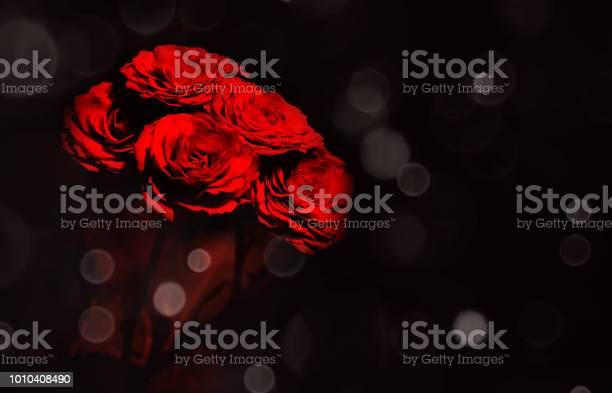 Rose flower with bokeh light on the dark background picture id1010408490?b=1&k=6&m=1010408490&s=612x612&h=t0sabss6ogfzo9gqevdpmgl6 wf h3crar5yzs lh1w=
